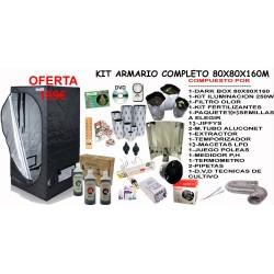 Kit Armario 80X80X160 CON 250W