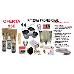 Kit 250w Profesional