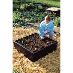 Grow Bed 98x98x25 cm (230 L)